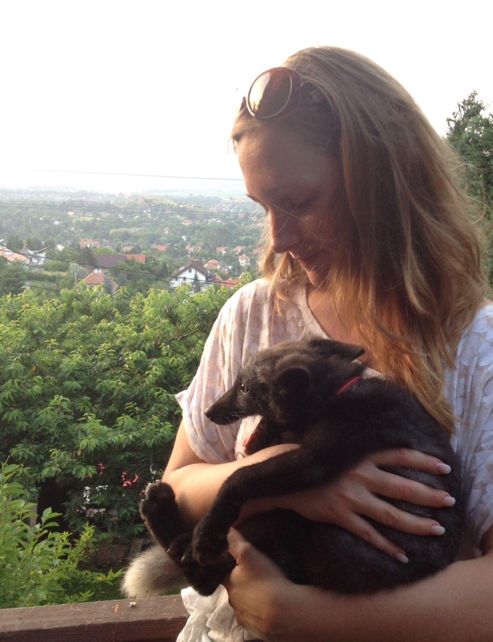 Kutyák Ligeti Pilisvörösvári Rendelő