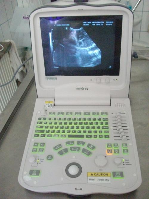Diagnosztika ultrahanggal